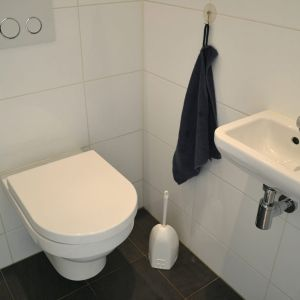 toilet-323.jpg
